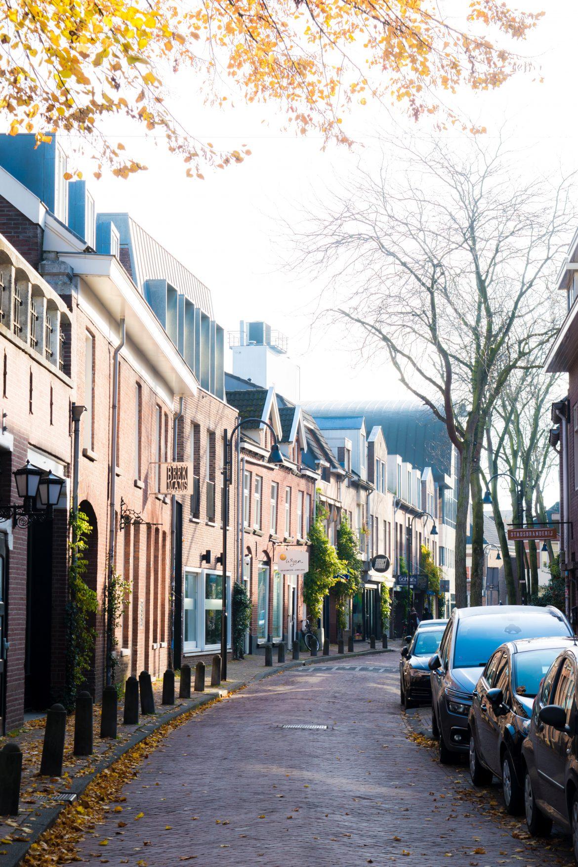 Hoe kan een makelaar helpen bij het kopen van een woning in Eindhoven?
